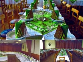 Hochzeitssaal in Marz - Österreich