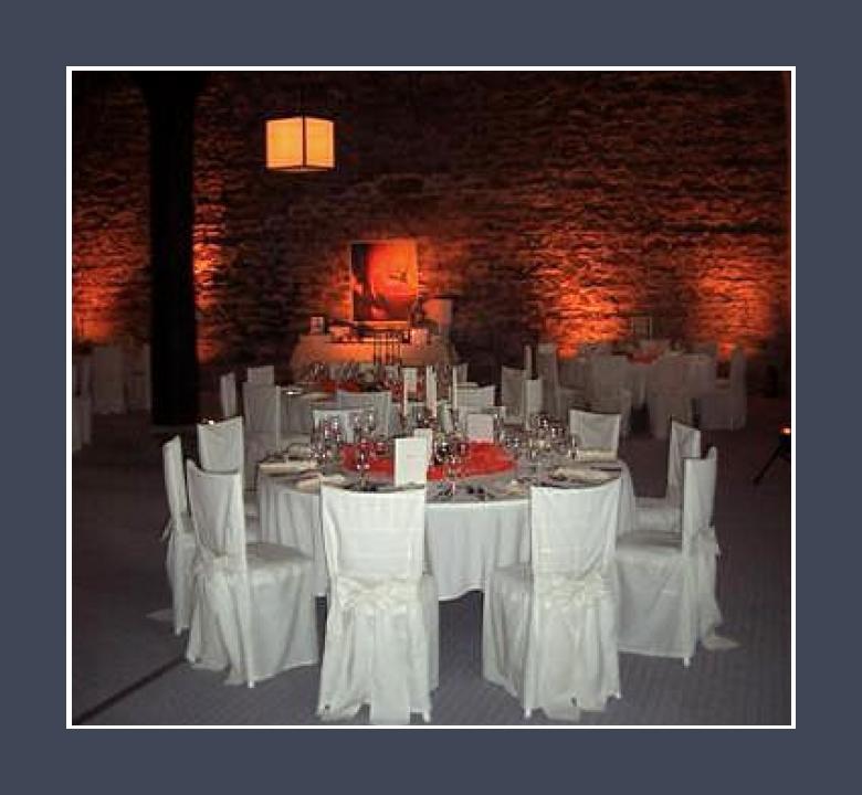 Schloss Büdingen 300 Personen Scheune Hochzeitssaal Location Hessen Frankfurt am Main Aschaffenburg